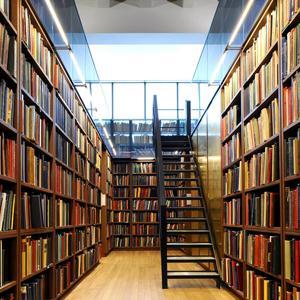 Библиотеки Орла